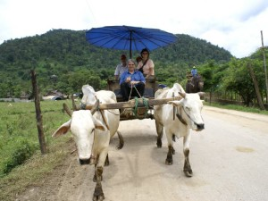 05-ox-cart-riding_lbb