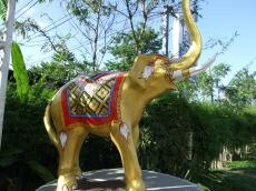 golden-elephant-resort-in-north-of-thailand-ch_sbp
